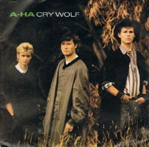 "A-HA Cry Wolf 7"" Single Vinyl Record 45rpm Warner Bros. 1986"